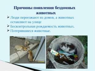 Причины появления бездомных животных Люди переезжают издомов, аживотных ос