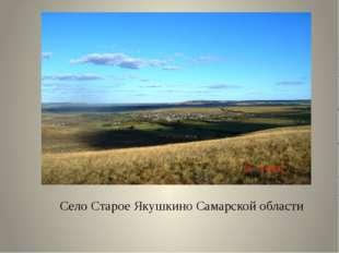 Село Старое Якушкино Самарской области