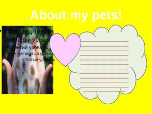 About my pets! ______________________________________________________________