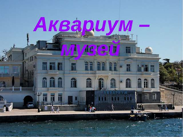 Аквариум – музей