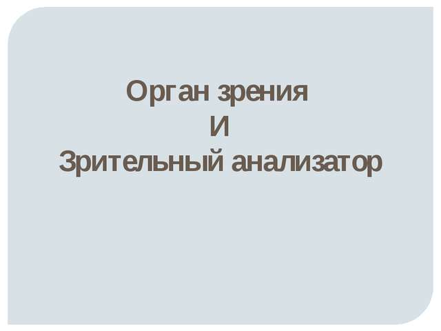 Орган зрения И Зрительный анализатор