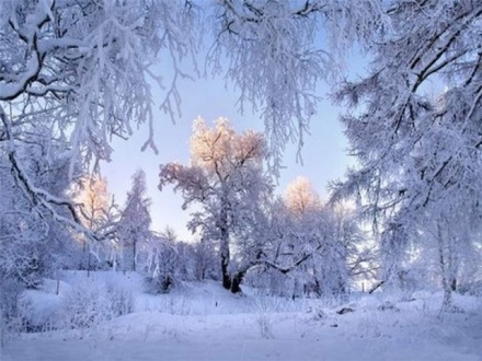 http://www.stihi.ru/pics/2012/12/17/3811.jpg
