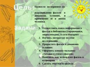 Цель: Провести эксперимент по выращиванию фасоли в домашних условиях, и приме