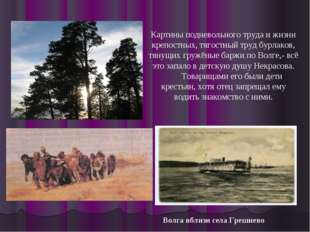 Волга вблизи села Грешнево Картины подневольного труда и жизни крепостных, тя