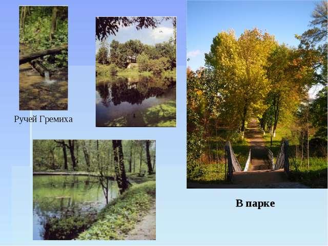 Ручей Гремиха В парке