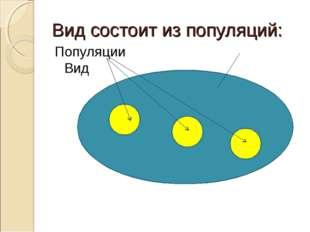 Вид состоит из популяций: Популяции Вид