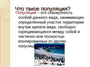 Что такое популяция? Популяция – это совокупность особей данного вида, занима