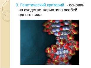 3. Генетический критерий - основан на сходстве кариотипа особей одного вида.