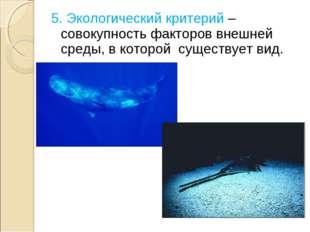 5. Экологический критерий – совокупность факторов внешней среды, в которой су