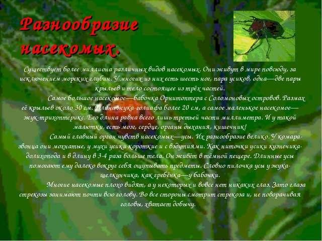 Разнообразие насекомых.  Существует более миллиона различных видов насекомых...