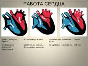 РАБОТА СЕРДЦА Фазы сердечного циклаПоложение клапановНаправление движения к