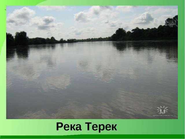 Река Терек