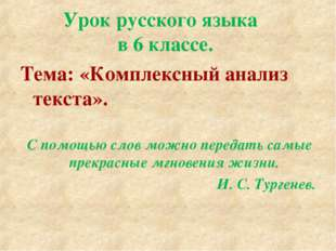 Урок русского языка в 6 классе. Тема: «Комплексный анализ текста». С помощью