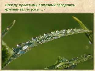 «Всюду лучистыми алмазами зарделись крупные капли росы…»
