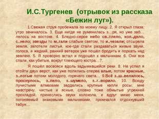 И.С.Тургенев (отрывок из рассказа «Бежин луг»). 1.Свежая струя пробежала по м
