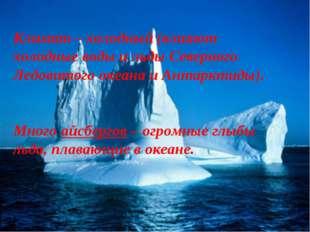 Климат – холодный (влияют холодные воды и льды Северного Ледовитого океана и