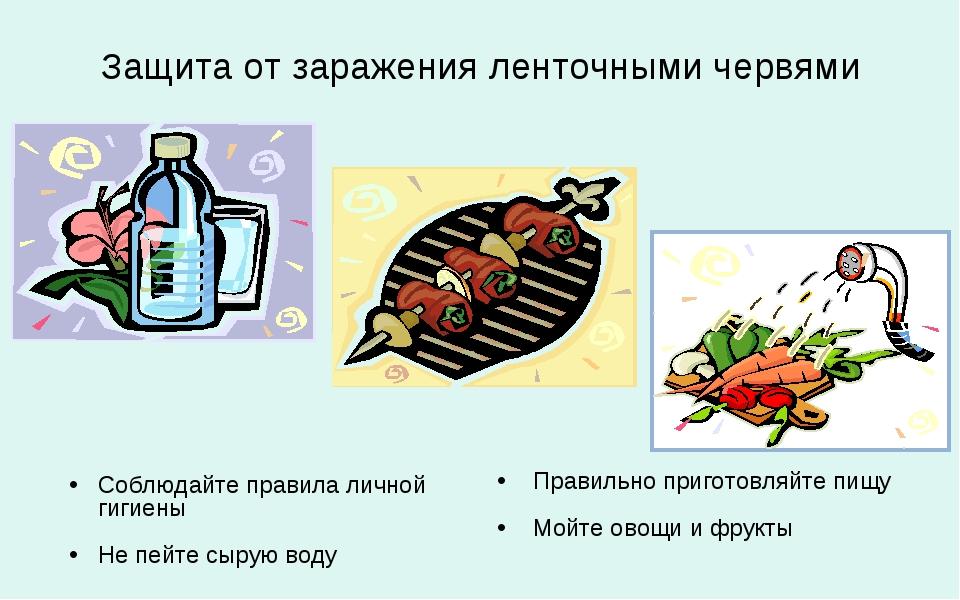 Защита от заражения ленточными червями Соблюдайте правила личной гигиены Не п...