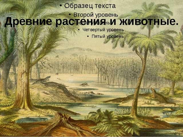 Древние растения и животные.