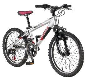 Название: Современный велосипед Автор: Илья Гуревич, Юрий Разин - 4 Декабря 2013 - Blog - Lauerpottery