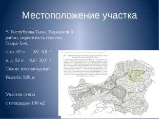 Местоположение участка *- Республика Тыва, Тоджинский район, окрестность посе