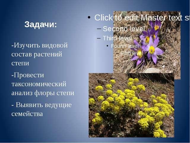 Задачи: -Изучить видовой состав растений степи -Провести таксономический анал...