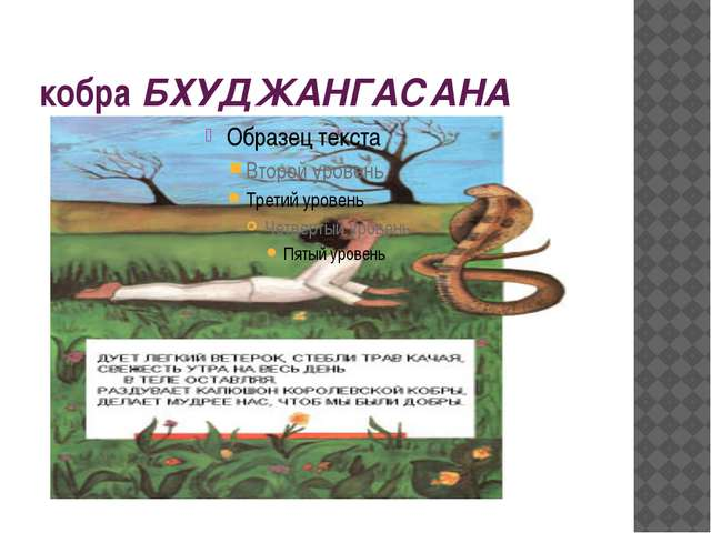 кобра БХУДЖАНГАСАНА