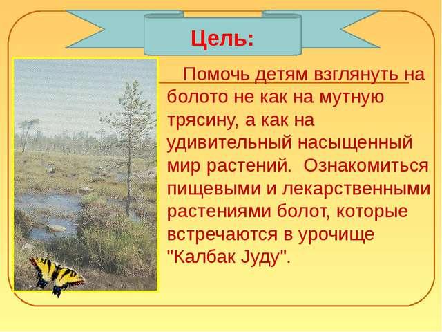 Помочь детям взглянуть на болото не как на мутную трясину, а как на удивител...