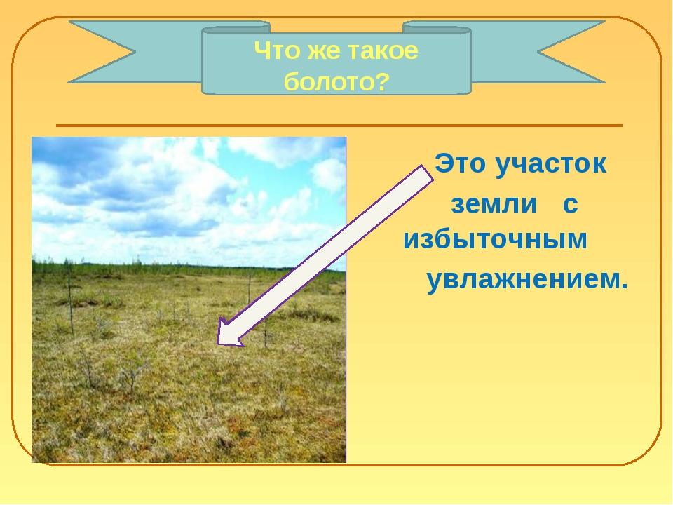 Это участок земли с избыточным увлажнением. Что же такое болото?