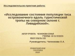 Исследовательско-пректная работа:  «Исследование состояния популяции тиса ос
