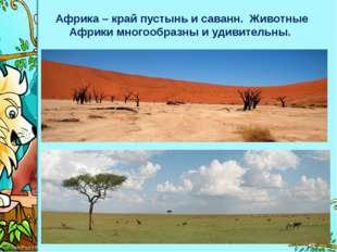 Африка – край пустынь и саванн. Животные Африки многообразны и удивительны. P