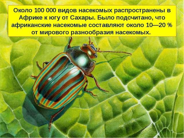 Около 100 000 видовнасекомыхраспространены в Африке к югу отСахары. Было п...