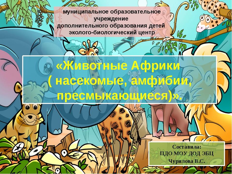 «Животные Африки ( насекомые, амфибии, пресмыкающиеся)». Составила: ПДО МОУ Д...