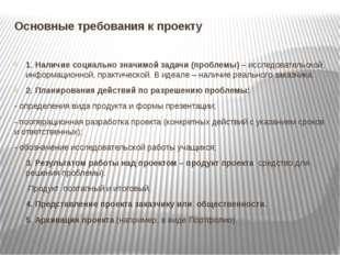 Основные требования к проекту 1. Наличие социально значимой задачи (проблемы)