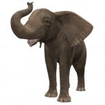 Огромный 3D слон, png