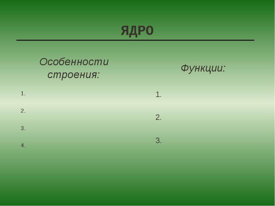 ЯДРО 1. 2. 3. 4. 1. 2. 3. Особенности строения: Функции: