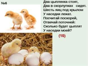 Два цыпленка стоят, Два в скорлупках сидят. Шесть яиц под крылом У наседки л