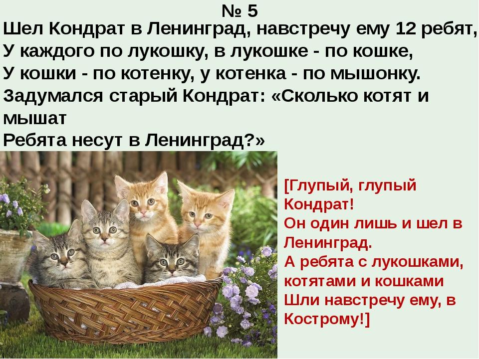 № 5 Шел Кондрат в Ленинград, навстречу ему 12 ребят, У каждого по лукошку, в...