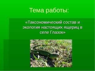 Тема работы: «Таксономический состав и экология настоящих ящериц в селе Глазок»