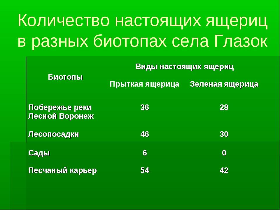 Количество настоящих ящериц в разных биотопах села Глазок
