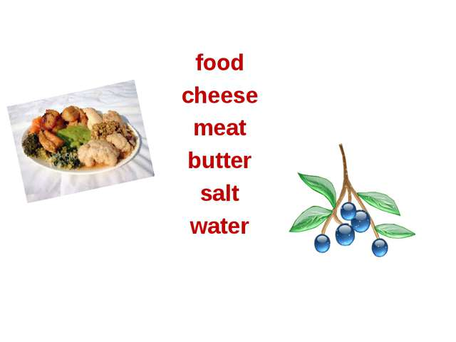 food cheese meat butter salt water