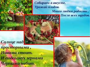 Собираем в августе, Урожай плодов. Много людям радости, После всех трудов.