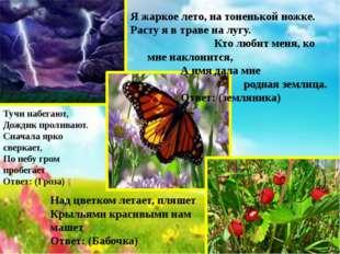 Над цветком летает, пляшет Крыльями красивыми нам машет Ответ: (Бабочка) Я жа