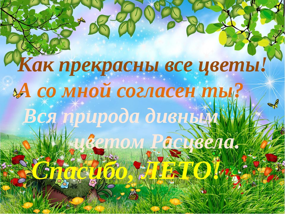Как прекрасны все цветы! А со мной согласен ты? Вся природа дивным цветом...