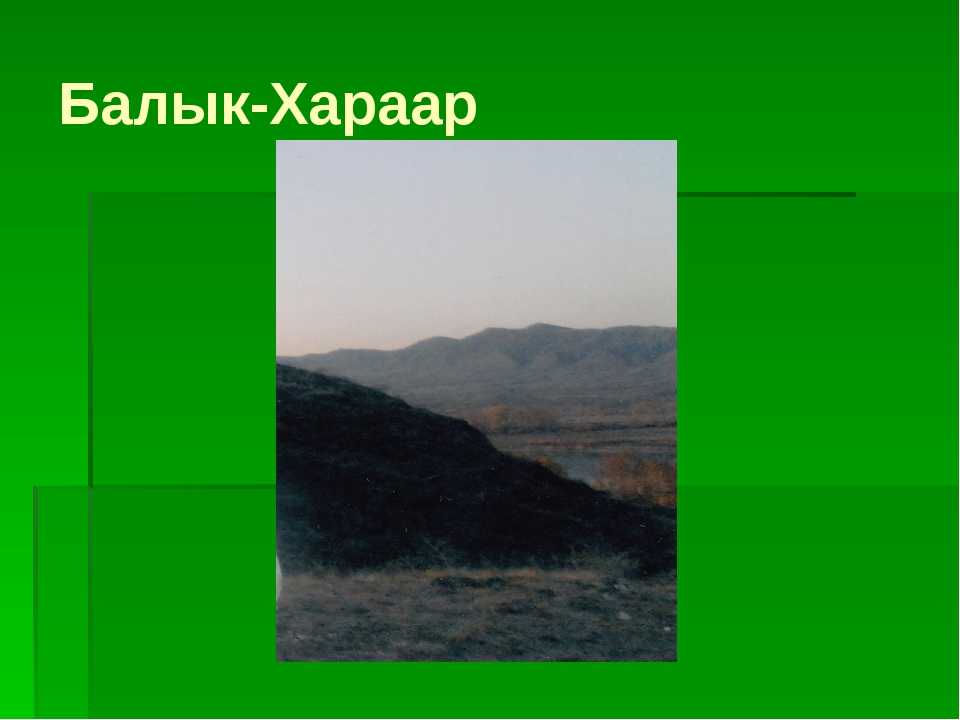 Балык-Хараар