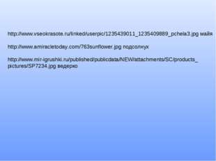 http://www.vseokrasote.ru/linked/userpic/1235439011_1235409889_pchela3.jpg ма