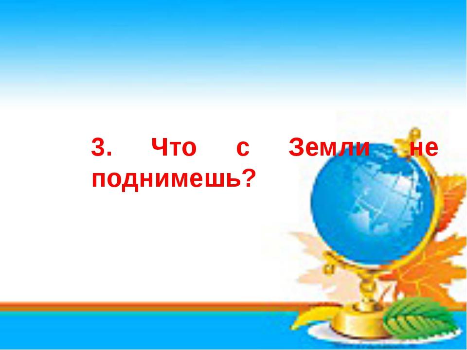 3. Что с Земли не поднимешь?
