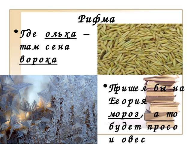 Рифма Где ольха – там сена вороха Пришел бы на Егория мороз, а то будет просо...