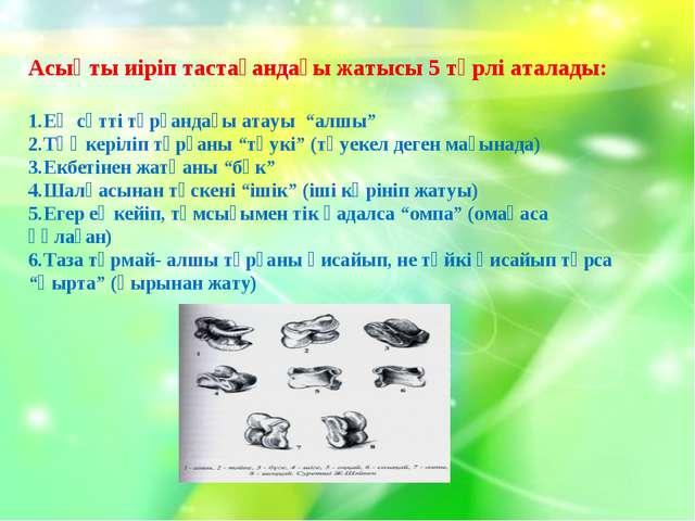 Асық Асықты иіріп тастағандағы жатысы 5 түрлі аталады: Ең сәтті тұрғандағы ат...