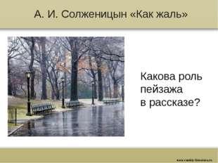 А. И. Солженицын «Как жаль» Какова роль пейзажа в рассказе? www.russkiy-liter