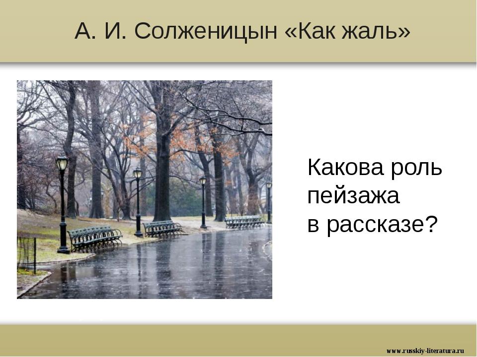 А. И. Солженицын «Как жаль» Какова роль пейзажа в рассказе? www.russkiy-liter...